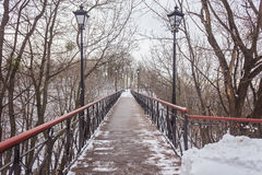 Iron bridge over a pond. In a winter day Stock Photos