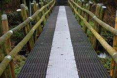 Iron bridge over Swamp Stock Photography