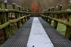Iron bridge over Swamp Royalty Free Stock Photos