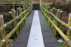 Iron bridge over Swamp Stock Photo