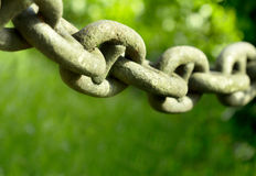 Iron chain Stock Image