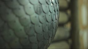 The iron chain hanging on the wall stock footage