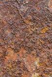 Iron containing rock Stock Image