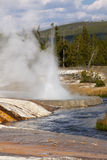 Iron Creek at Black Sand Basin and Geyser Royalty Free Stock Photography