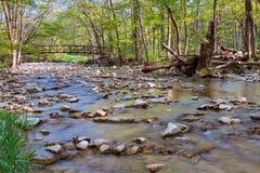 Iron Crossing. Springtime foliage emerges around an iron bridge that cross a rocky creek at Waterfall Glen stock image