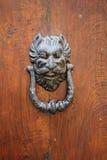 Iron Door knoker Royalty Free Stock Photo