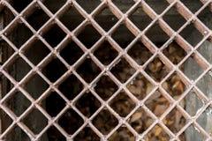Iron drain. Closeup image of Iron water drain pattern Royalty Free Stock Image
