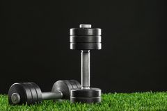 Iron dumbbell on green grass. Royalty Free Stock Photos
