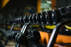 A full set of dumbbells, stuff for effective magnification of power and muscle size on a dark blurred background. Iron dumbbells, equipment for weight lifting Stock Photography