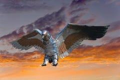 Iron eagle Royalty Free Stock Photo