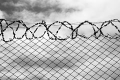 Iron fence with a barbed wire. Royalty Free Stock Photo