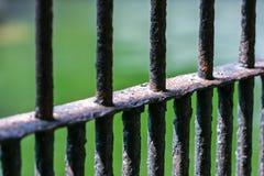 Iron fence Stock Images
