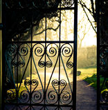 Iron fence. Closeup shot, spring day Stock Photo
