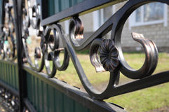 Iron fence flower detail Stock Images
