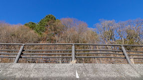 The iron fence with many trees in autumn Royalty Free Stock Image