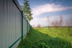 Iron fence and summer meadow. Stock Images