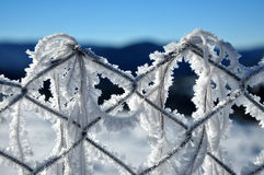 Iron fence in winter with snow and ice crystals Royalty Free Stock Image