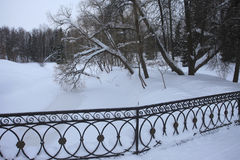 Iron fencing winter bridge Pavlovsk Park Saint-Petersburg, Russia Royalty Free Stock Photos