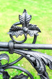 Iron floral ornament. Part of antique curved fence in Warsaw. Royalty Free Stock Photos
