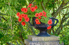 Iron flower pot and red flowers. Fine black iron flower pot with some red flowers inside. Pot is standing on stone pillar and has some green shrubbery behind it Stock Photography