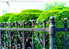 Iron forged fence, wrought iron ornaments,horizontal photo, space for copy, royalty free stock image