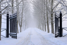 Iron gate. At an alley one winter day Royalty Free Stock Image