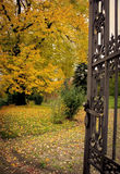 Iron gate in the autumn park. Wrought iron gate in the autumn park Royalty Free Stock Photo