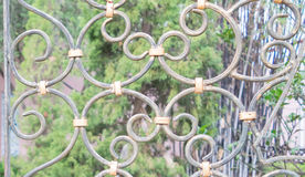 Iron gate. Beautiful retro and classical design of wrought iron brass gate and fence pattern with locked key, garden background Stock Photo