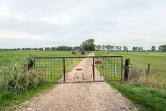 Iron gate with an elephant formed from a thin iron bar as the cl. Osure of a dirt road in a rural landscape in the Netherlands On the rusted sign in Dutch stock photo