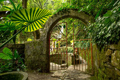 Iron gate on junge path Royalty Free Stock Images