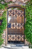 Iron gate in leaves. Iron gate of european house in leaves Stock Images