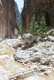 The Iron Gate of the Samaria Gorge Royalty Free Stock Image