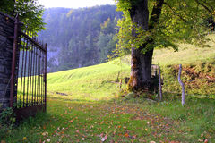 The iron gates on the green meadow with the mountains on the background in the sunny day. Stock Photography