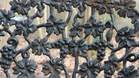 Iron Grapes Royalty Free Stock Photos