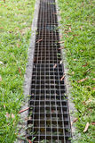 Iron grate of water drain in grass garden. Field stock image