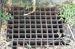 Iron grate of water drain. A photo of iron grate of water drain: steel rusty grating in the Grass garden and concrete, close up stock photo