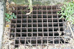 Iron grate of water drain. A photo of iron grate of water drain: steel rusty grating in the Grass garden and concrete, close up stock image
