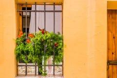 Iron grating window Stock Image