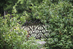 Iron Heart Gate. Iron Heart Shaped Gate with Plants stock image