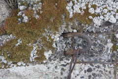 Iron hook in old concrete Stock Photos