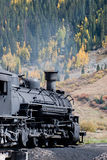 Iron Horse #486 Royalty Free Stock Photography