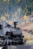 Iron Horse #486 Royalty Free Stock Photography