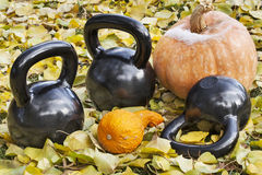 Iron  kettlebells outdoors Royalty Free Stock Images