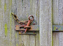 Iron latch on the wooden door Stock Photography
