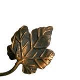 Iron leaf Stock Photo