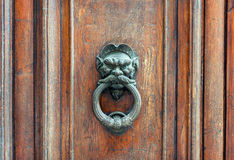 Iron lion doorknob on wooden door Royalty Free Stock Image