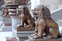 Iron lion statues. In Chinese temple royalty free stock photos