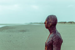 Iron man, Crosby Beach. ENGLAND, LIVERPOOL - 15 NOV 2015: Iron man, Crosby Beach Stock Images
