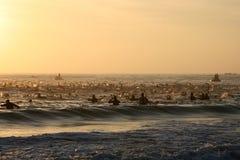 IRON MAN sunrise start. The first part of the iron man south africa triathlon Royalty Free Stock Photo