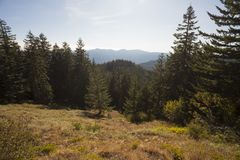 Iron Mountain vandring i Oregon Arkivbilder